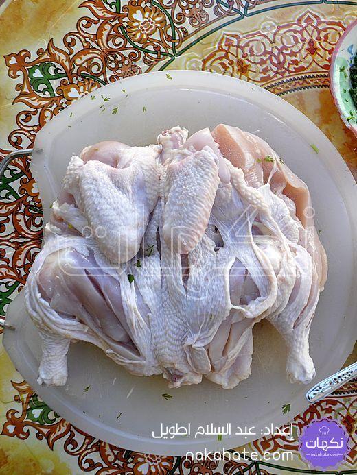 تشريح الدجاج بخطوط طولية
